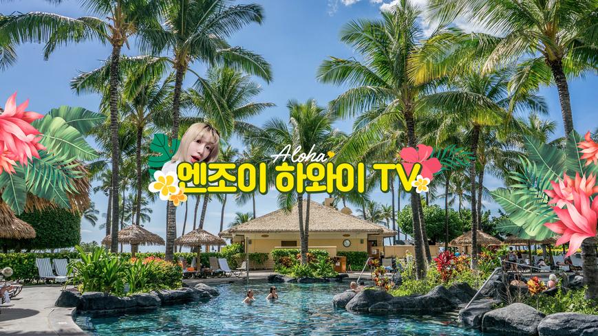 하와이 미국 해외 [브이로그/여행/맛집/호텔] 감성적인 편집자 구합니다